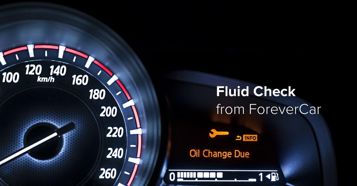 Fluid Check3.jpg